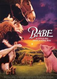 Babe - Summer Movie Program