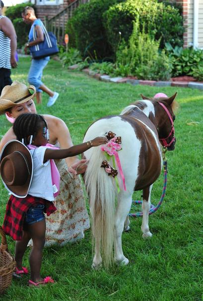 Girl decorating mini horse tail with a bow.