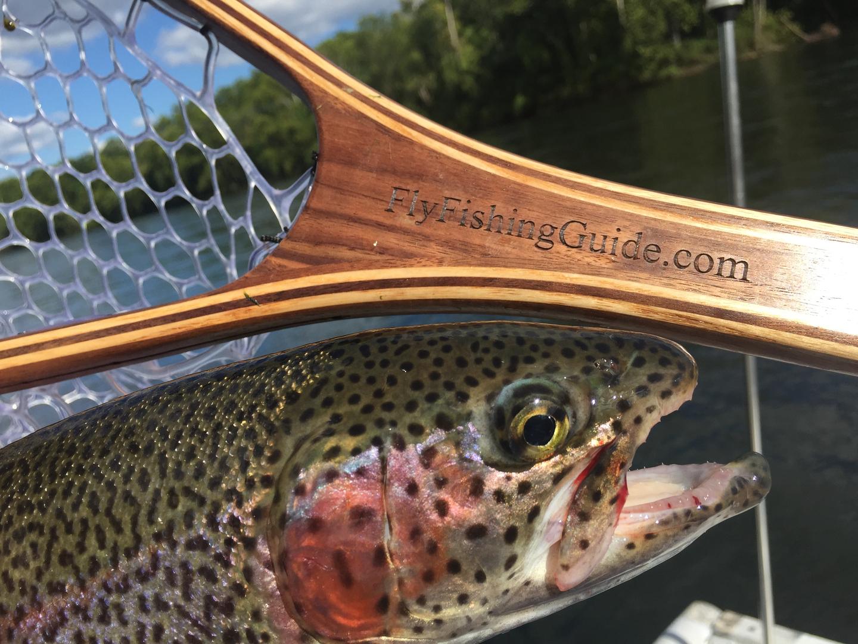 Beginner Fly Fishing Branson Mo Fly Fishing Guide