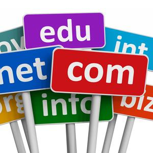 Domain Names and Hosting Plans