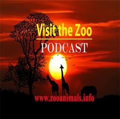 Visit the Zoo PODCAST