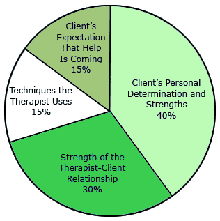 Pie Chart of What Contributes Most to Success in Therapy