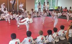 King Tiger Kids Martial Arts