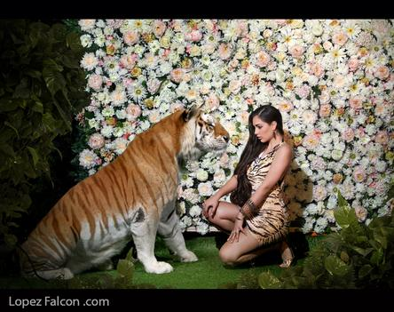Tiger quinceanera photoshoot quince photography with tiger tigers