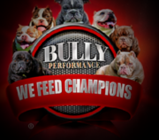 Bully Performance Logo, provides dog food especially formulated for Bully dogs
