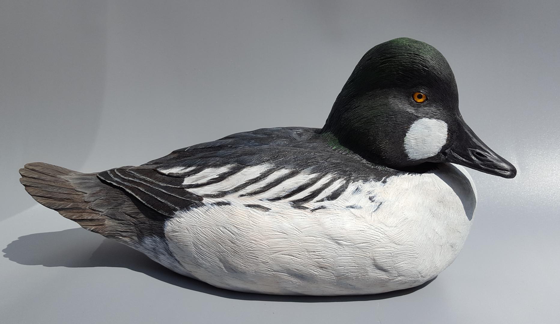 duck shop