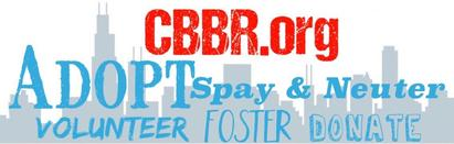 Chicagoland Bully Breed Rescue