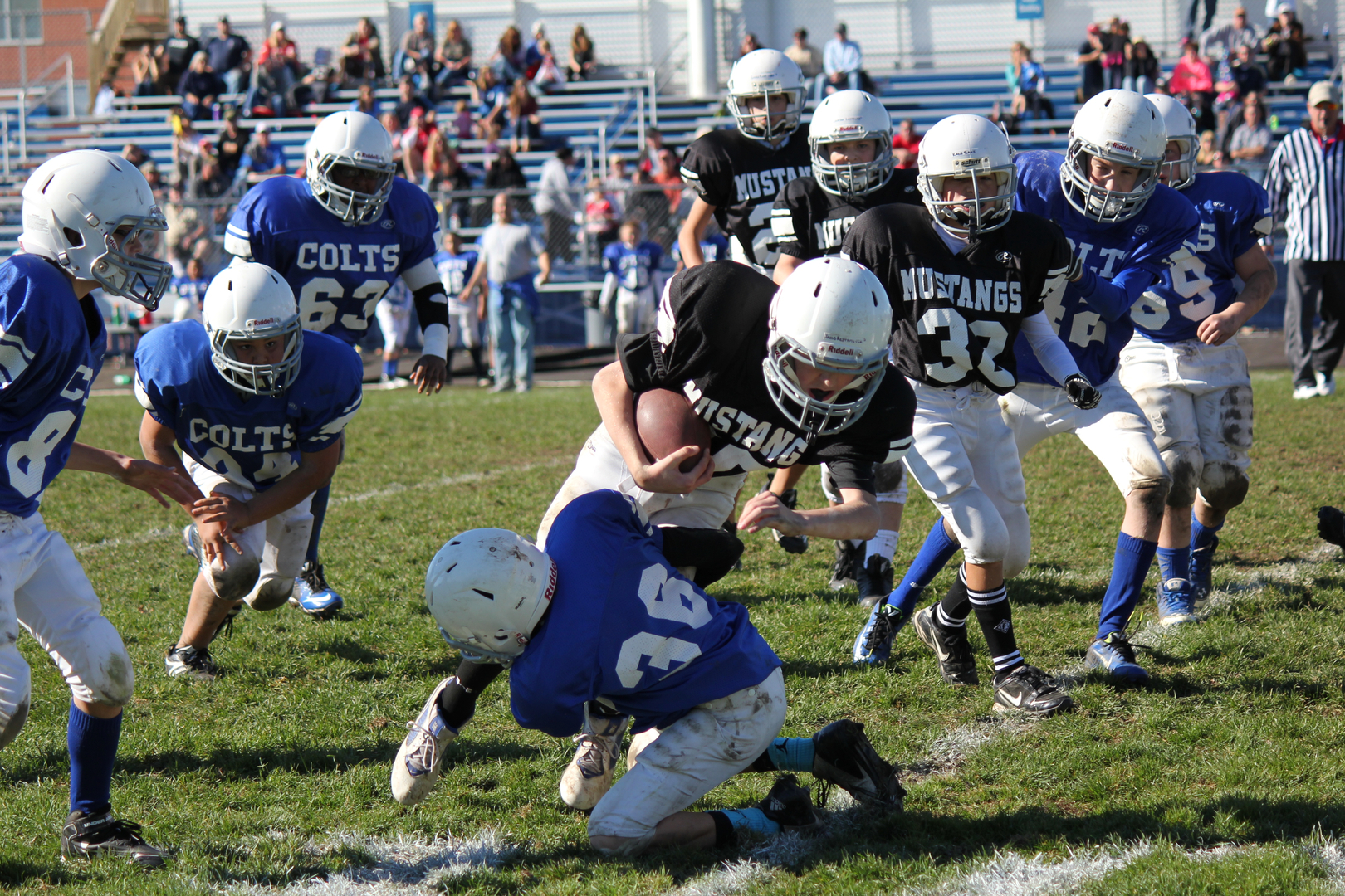 Image result for pee wee football