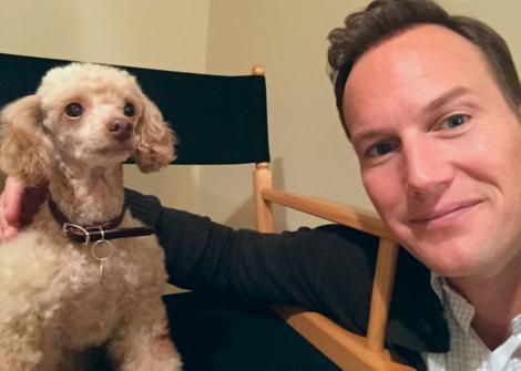 Midwest Animal Training - Animal Actors, Animal Actors