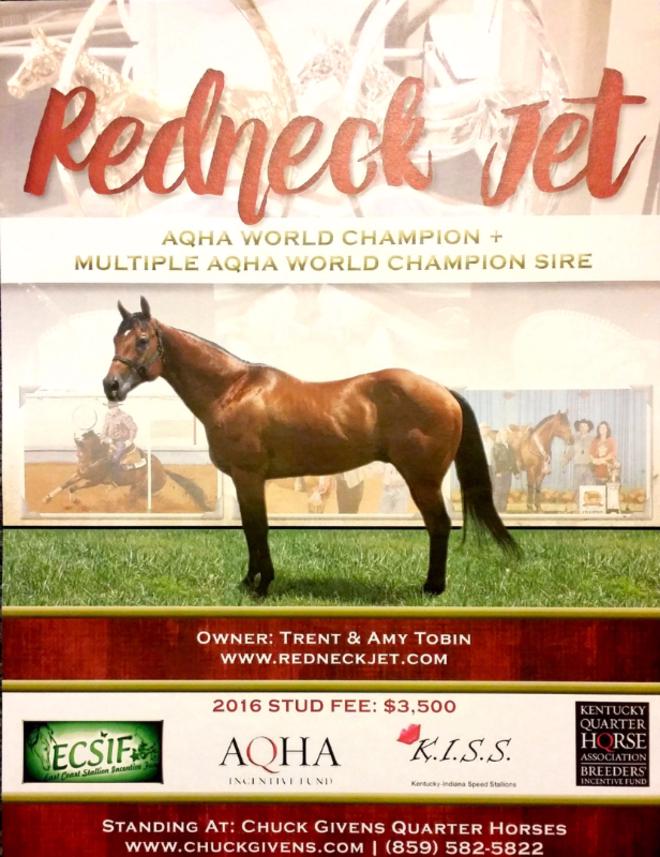 Kentucky Quarter Horse Association - Redneck City Boy