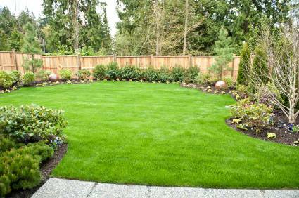 Charlotte Landscaping Secureturf Lawn Care Services Backyard - Backyard design charlotte