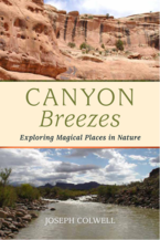 Canyon Breezes by Joseph Colwell front book cover