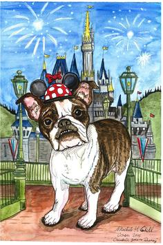 Boston Terrier, Disney World