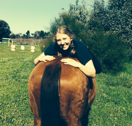 horse riding lesson and experiences available