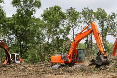 Leading Land Clearing Services in Lincoln NE | LNK Junk Removal