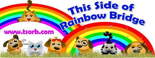 This Side of Rainbow Bridge Animal Rescue