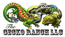 The Gecko Ranch