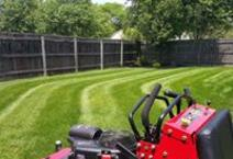 Lawn care, OneLove Lawn, Best Lawn Care, 43123, Grove City, Galloway, Commercial pt., Darbydale, Harrisburg, West Gate, #1 lawn care, Snow Removal, Spring cleanup, lawn care 43123, lawn care grove city, lawn care quote, free lawn care quote, veteran owned company