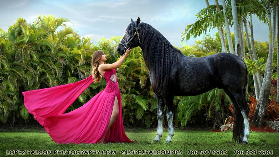QUINCEANERA WITH HORSE QUINCES HORSES SWEET 15