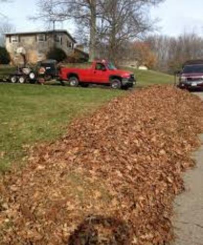 Leaf Removal Leaf Cleanup Yard Debris Removal Fall Leaf ...
