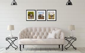 living room with framed pet portraits