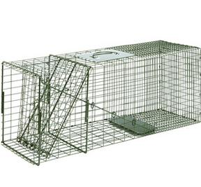 Single Door Cage Trap for raccoon and cat