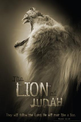 Lion Of Judah Christian Poster Slingshot Christian Products