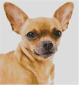 Cross Stitch Chart of a Sandy colored Chihuahua