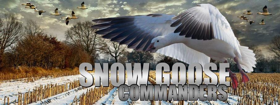 Home Of Snow Goose Commanders The King Of The Spring Missouri