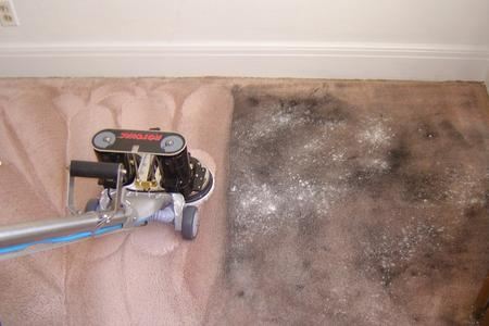 stain-removal-carpet-cleaning
