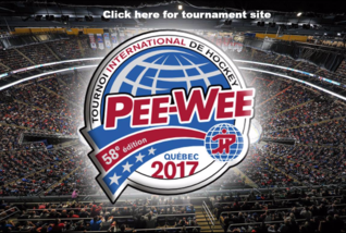 Tournament Website