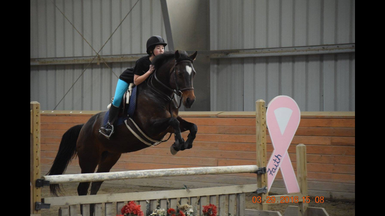 Lessons & Training at Black Ridge Farm