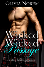 The Romance Review Official Review Wicked Wicked Passage