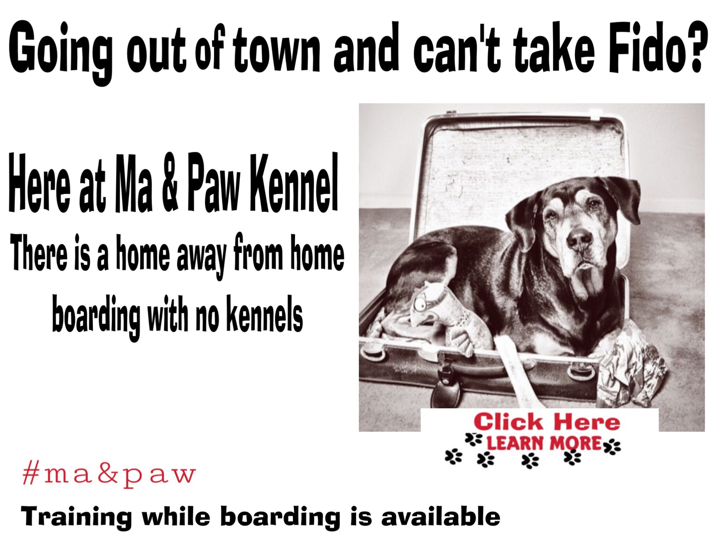 Ma & Paw Kennel - Dog Boarding And Daycare, Dog Training