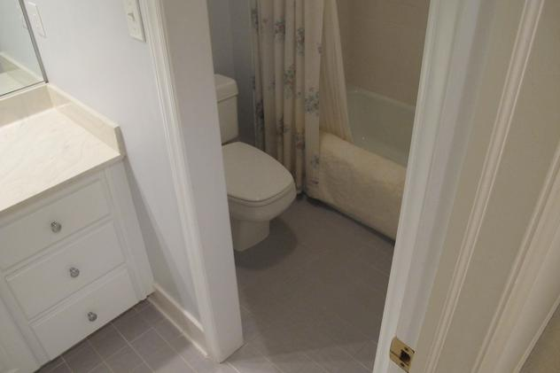 Bathtub and toilet in guest bathroom before remodel