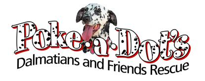 Poke-A-Dot's Dalmatian's and Friends Rescue