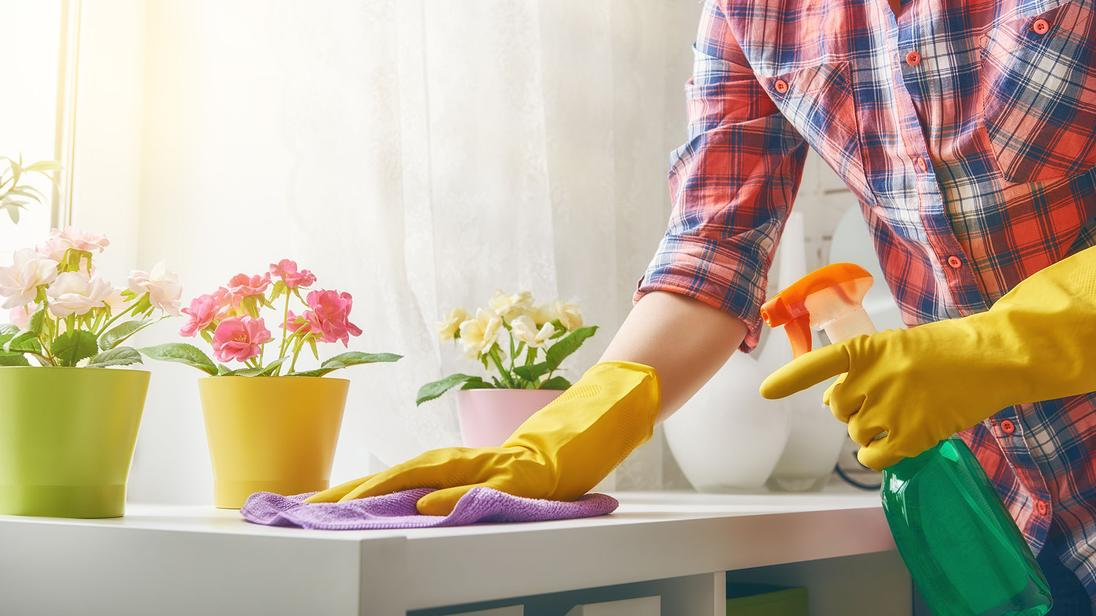 MISSION TX MCALLEN`S PREMIER HOME CLEANING SERVICES