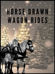 Horse Drawn Wagon Rides icon