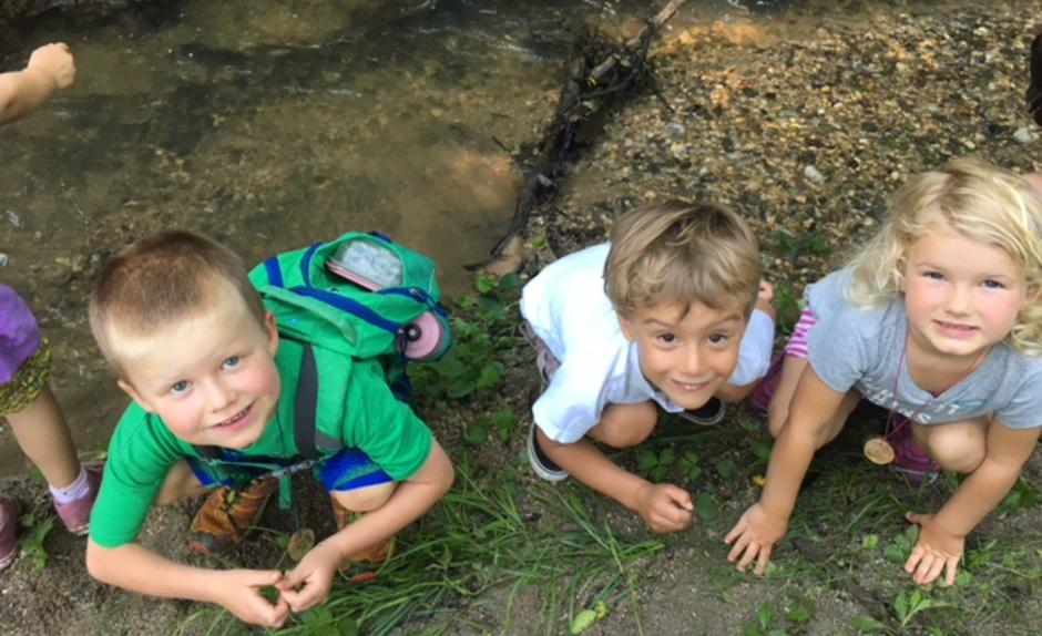 Campers explore a creek ecosystem