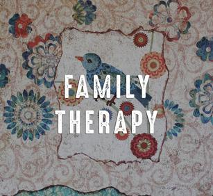 Family Therapy St. Paul