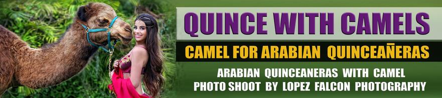 Quinceañera Camel Sweet 15 quince photography with camels quinceanera photo shoot
