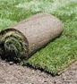 Professional sod installation with guarantee in Oakville