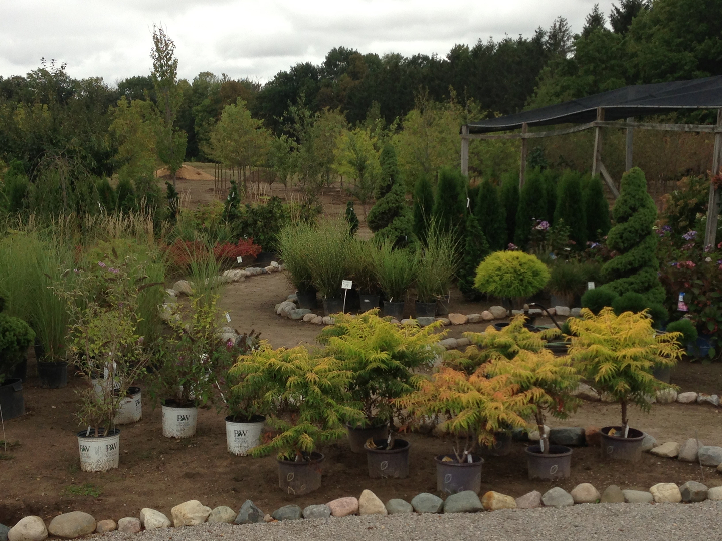 Landscape Design And installation, Nursery And Garden Center - Franz ...