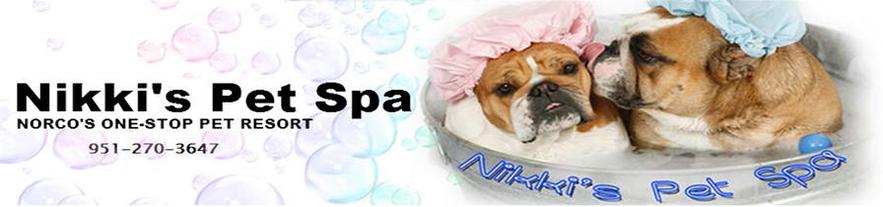 Our services solutioingenieria Images