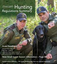 Hunting regulations and summary
