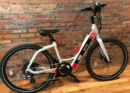 GenZe e202 Electric Bicycle