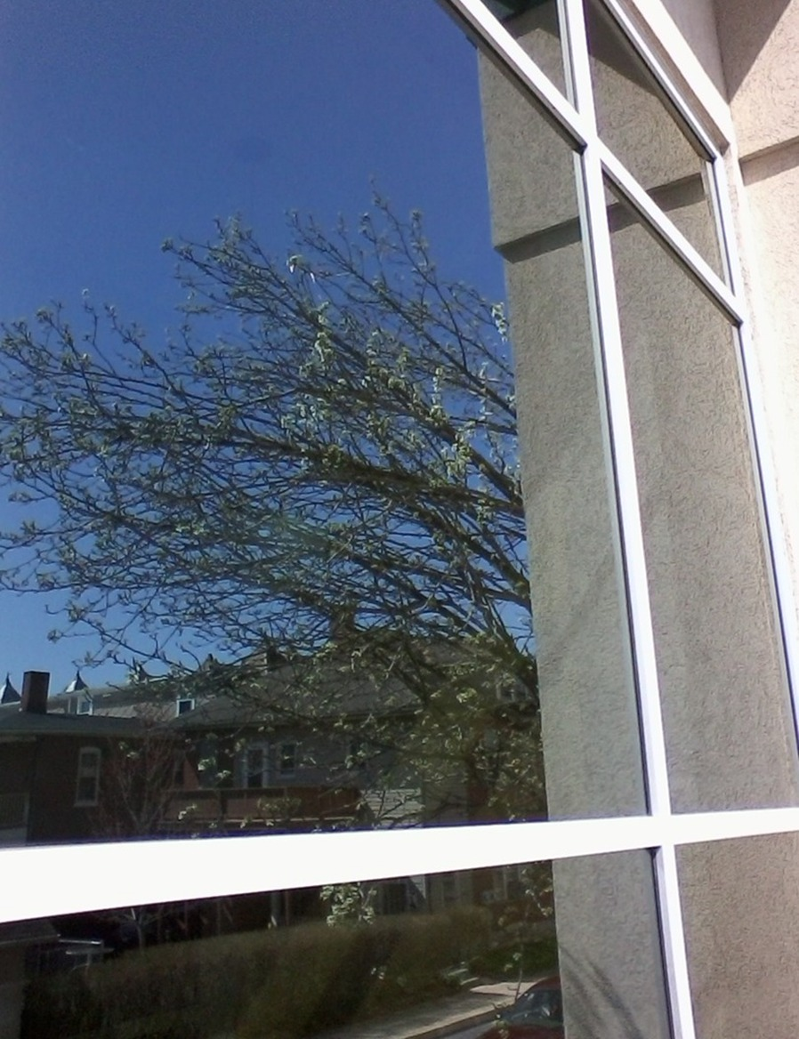 window washers bucks county