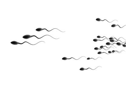 non invasive gender selection with artificial insemination