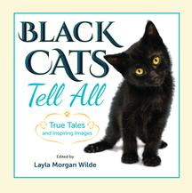 Black Cats Tell All Front Cover