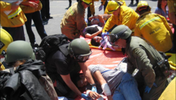 Multiple agency coordination for mass casualty incident